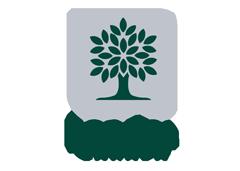 City of London, Ontario logo